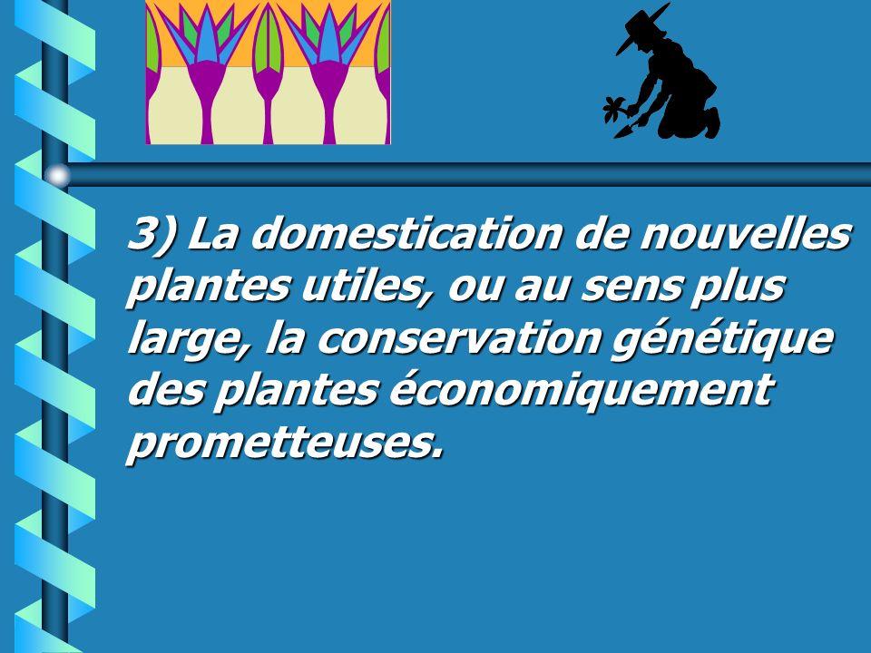 3) La domestication de nouvelles plantes utiles, ou au sens plus large, la conservation génétique des plantes économiquement prometteuses.
