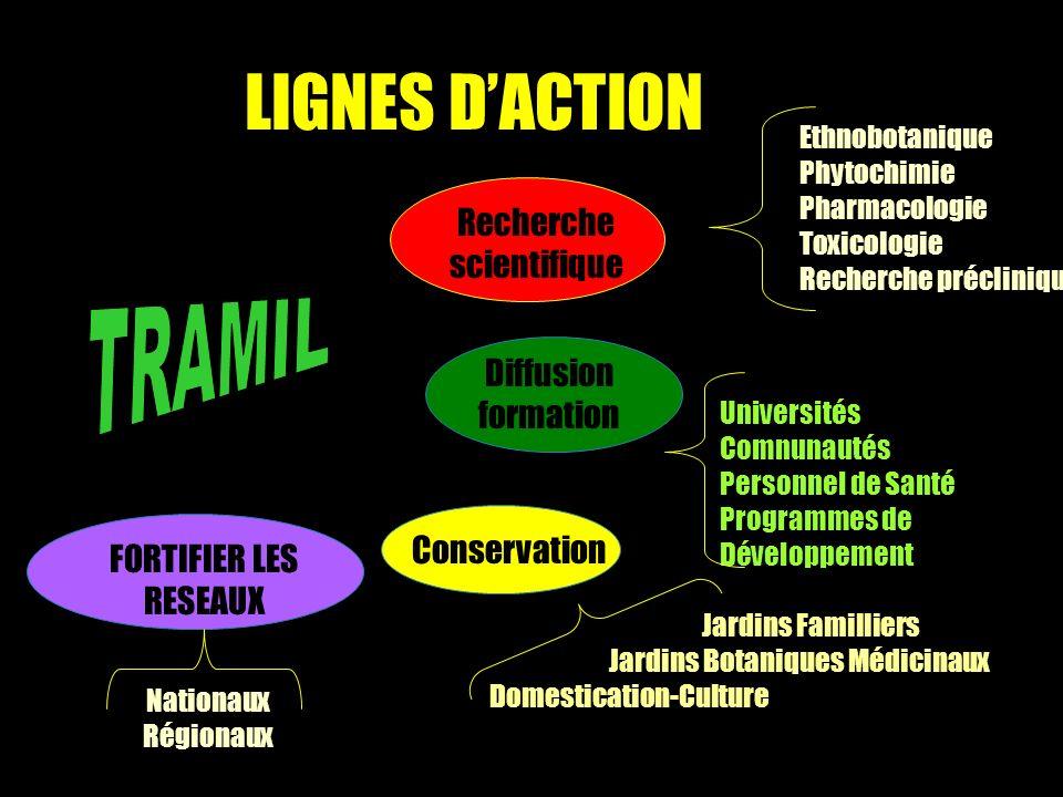 LIGNES D'ACTION TRAMIL Recherche scientifique Diffusion formation