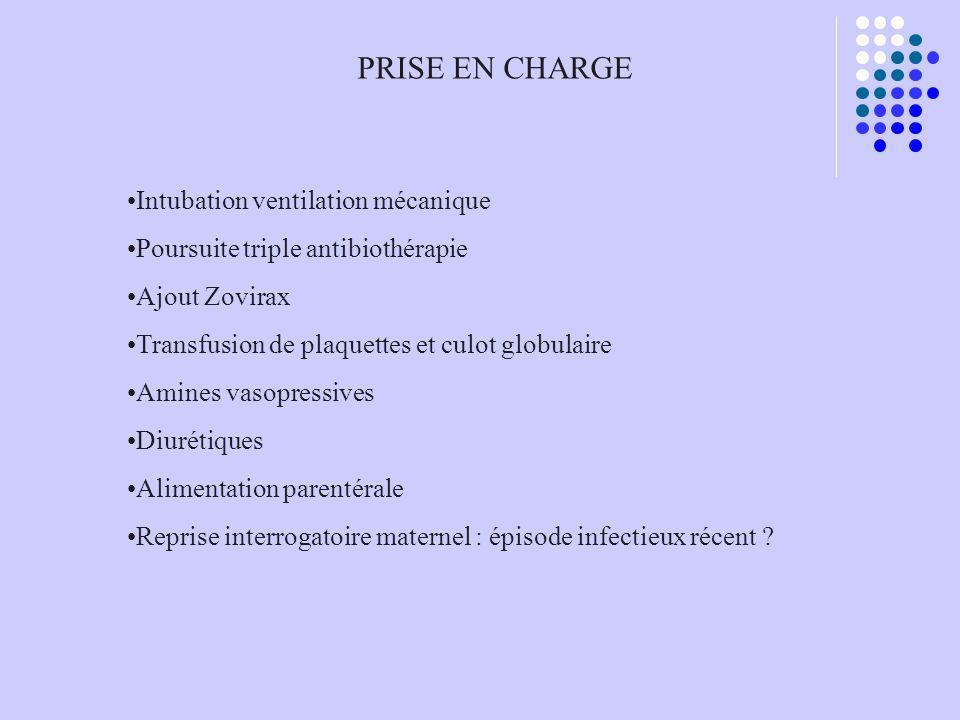PRISE EN CHARGE Intubation ventilation mécanique