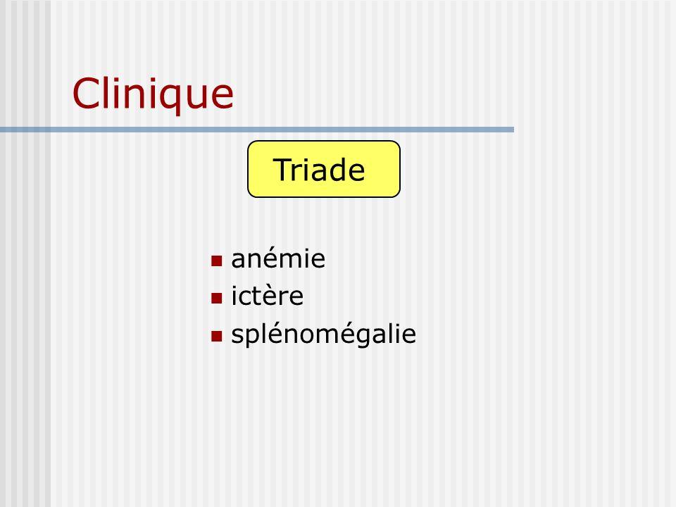 Clinique Triade anémie ictère splénomégalie