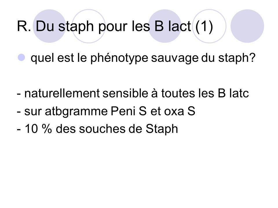 R. Du staph pour les B lact (1)