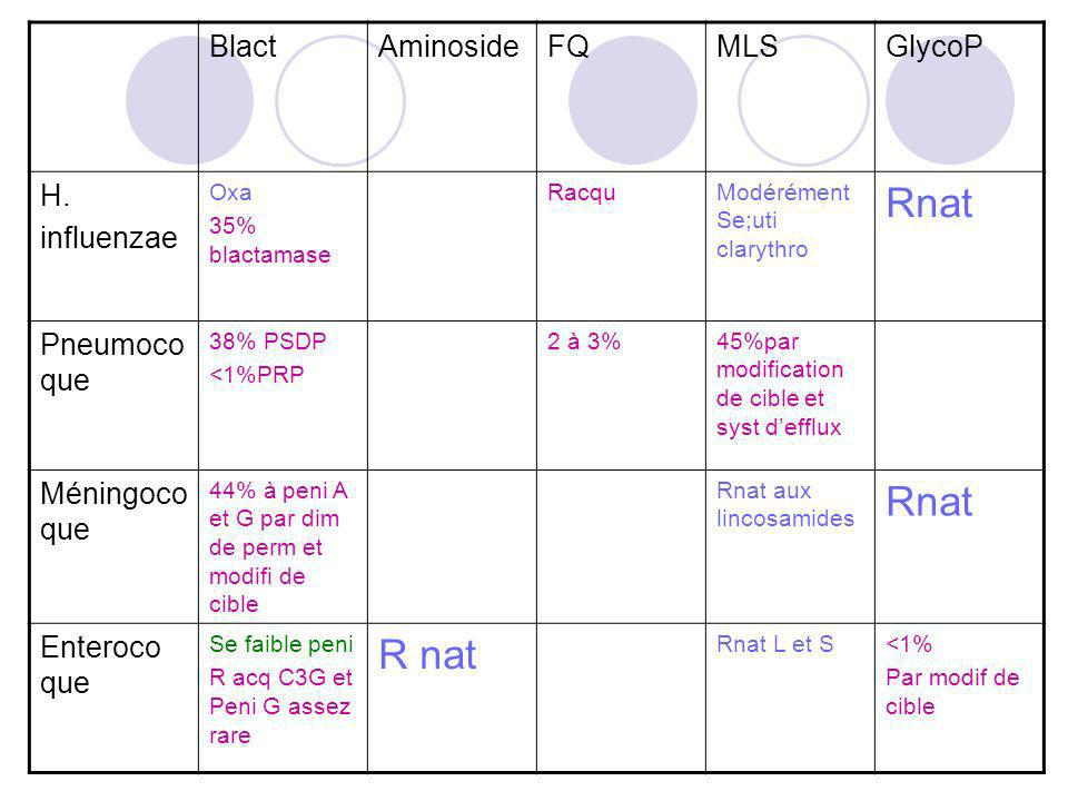 Rnat R nat Blact Aminoside FQ MLS GlycoP H. influenzae Pneumocoque