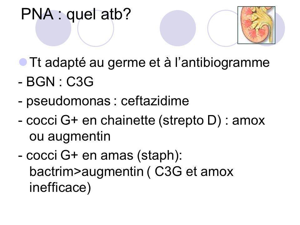 PNA : quel atb Tt adapté au germe et à l'antibiogramme - BGN : C3G