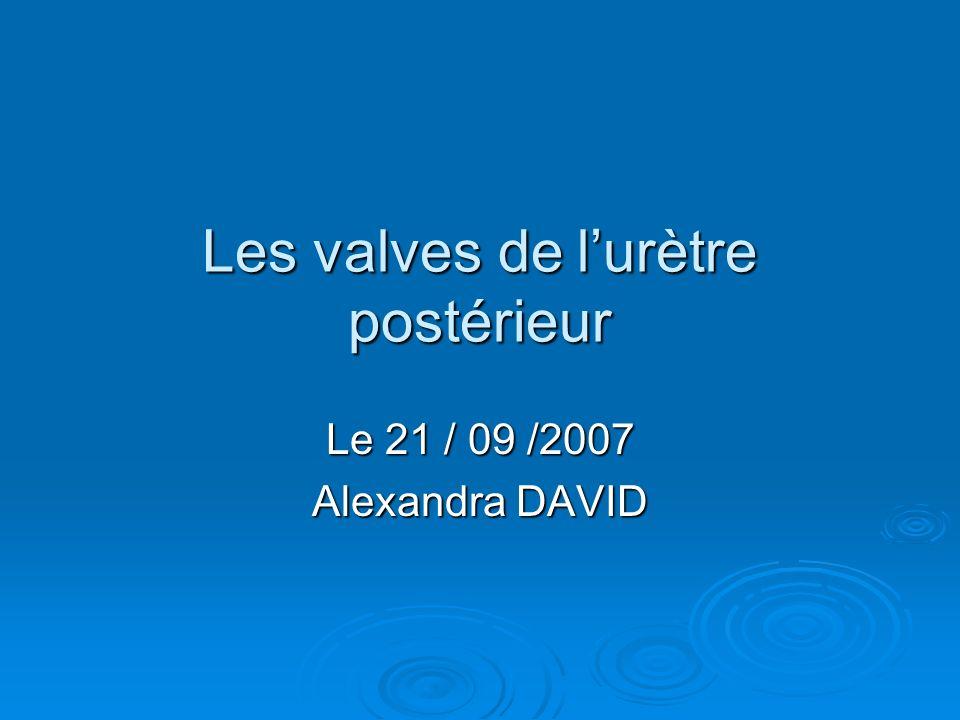 Les valves de l'urètre postérieur