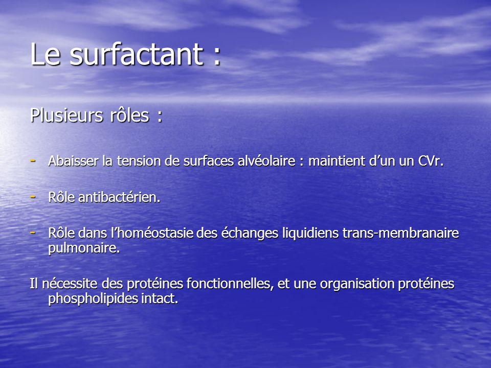 Le surfactant : Plusieurs rôles :