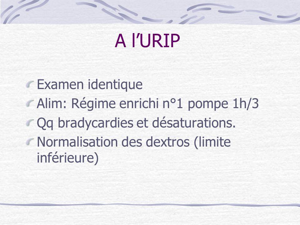 A l'URIP Examen identique Alim: Régime enrichi n°1 pompe 1h/3