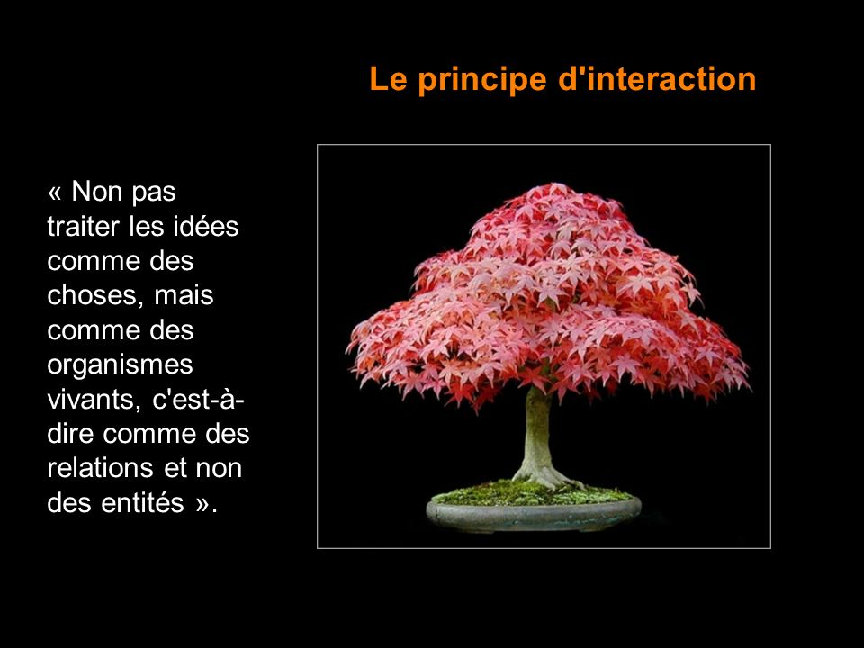 Le principe d interaction