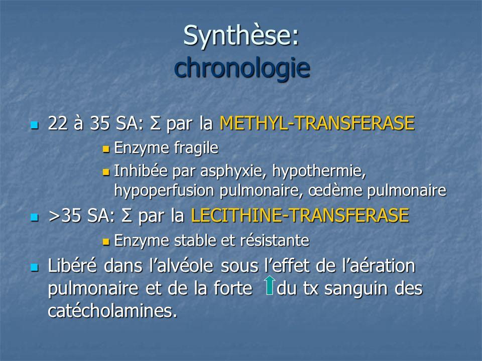 Synthèse: chronologie
