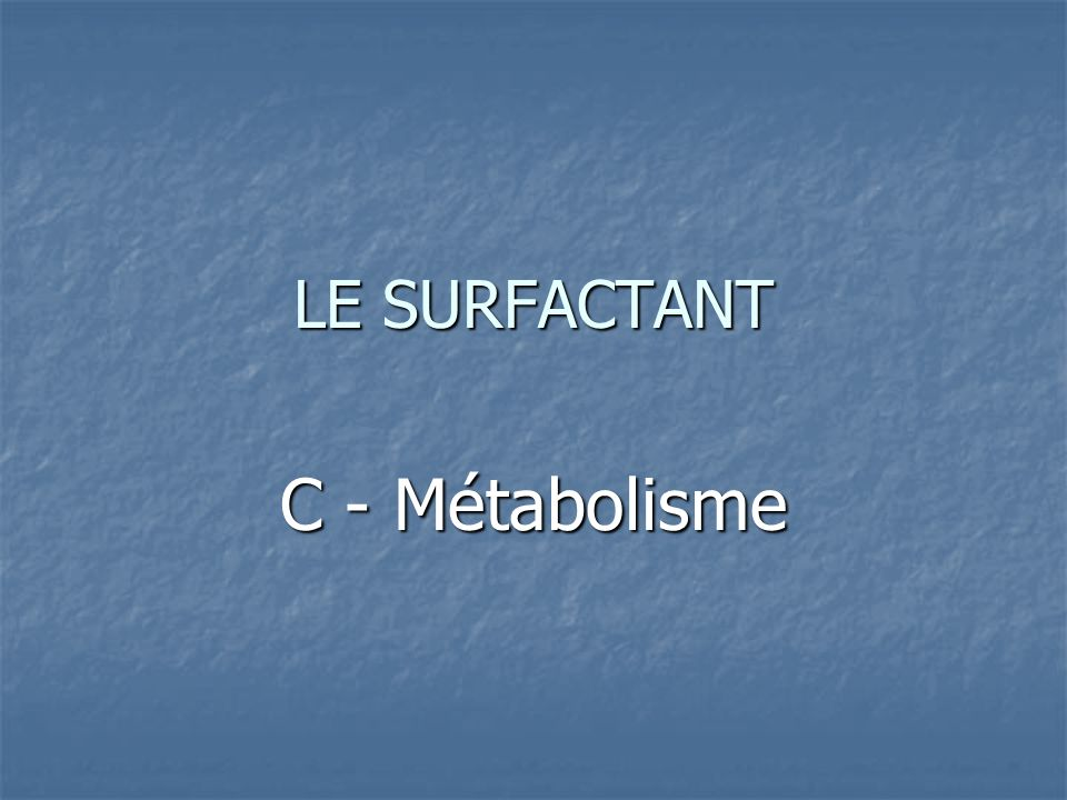 LE SURFACTANT C - Métabolisme