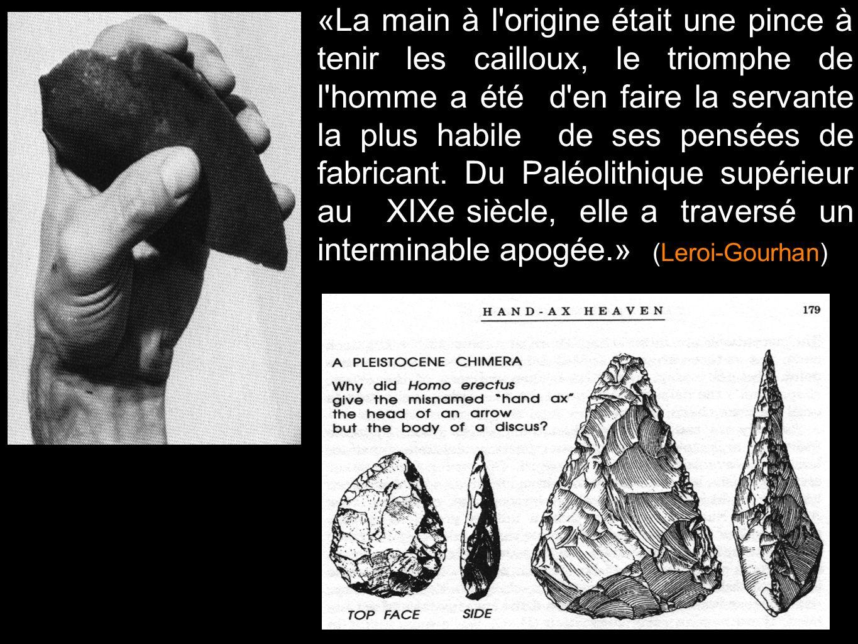 «La main à l origine était une pince à tenir les cailloux, le triomphe de l homme a été d en faire la servante la plus habile de ses pensées de fabricant. Du Paléolithique supérieur au XIXe siècle, elle a traversé un interminable apogée.»