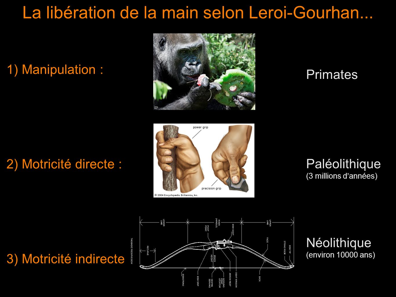 La libération de la main selon Leroi-Gourhan...