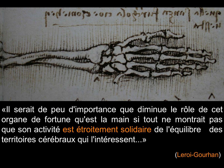 «Il serait de peu d importance que diminue le rôle de cet organe de fortune qu est la main si tout ne montrait pas que son activité est étroitement solidaire de l équilibre des territoires cérébraux qui l intéressent...»