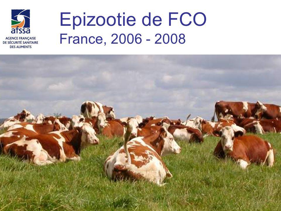 Epizootie de FCO France, 2006 - 2008