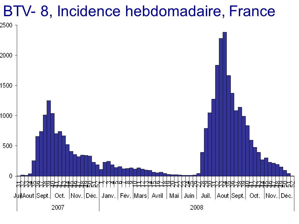 BTV- 8, Incidence hebdomadaire, France