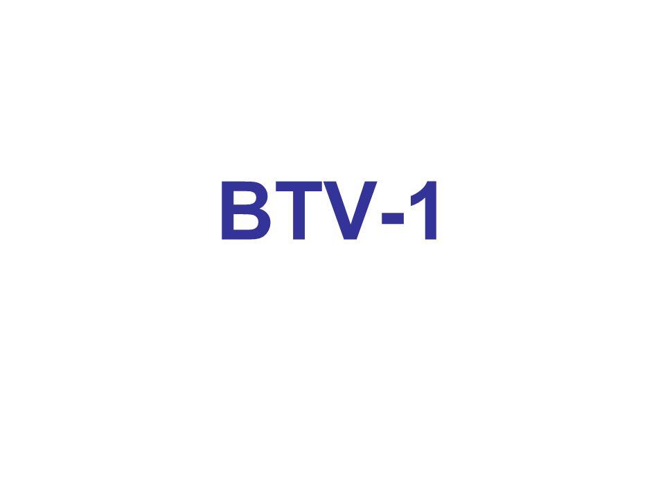 BTV-1