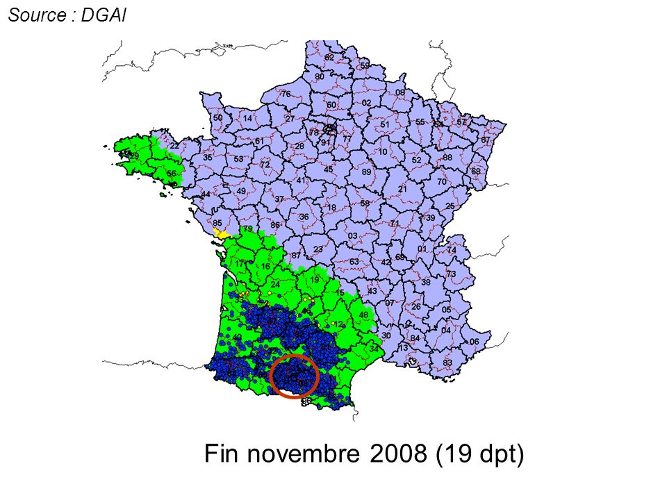 Source : DGAl c c Fin novembre 2008 (19 dpt)