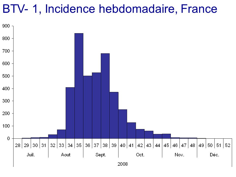 BTV- 1, Incidence hebdomadaire, France