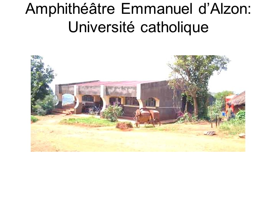 Amphithéâtre Emmanuel d'Alzon: Université catholique