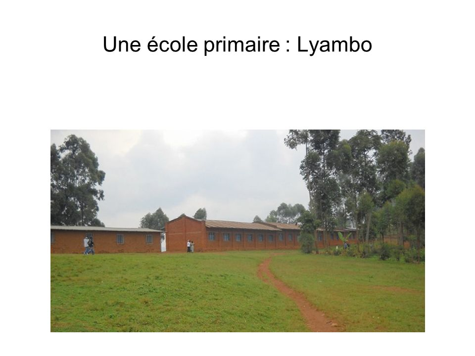 Une école primaire : Lyambo