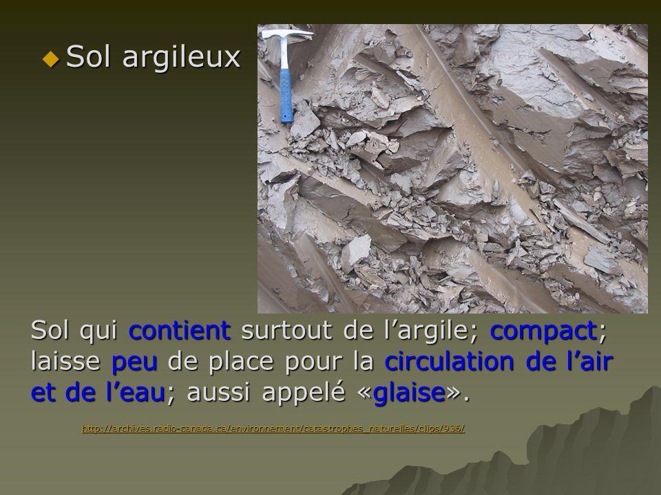 Sol argileux Sol qui contient surtout de l'argile; compact; laisse peu de place pour la circulation de l'air et de l'eau; aussi appelé «glaise».