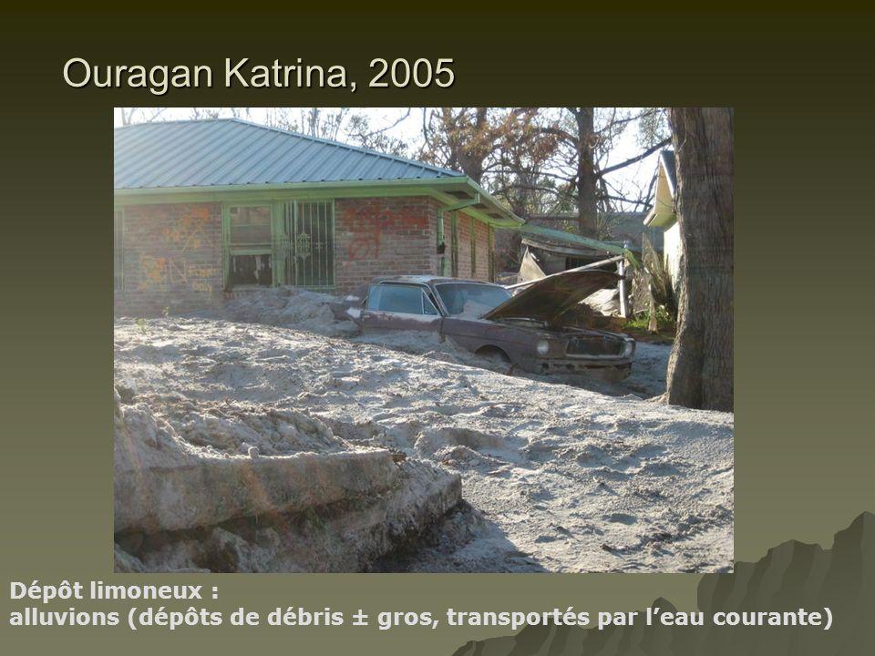 Ouragan Katrina, 2005 Dépôt limoneux :
