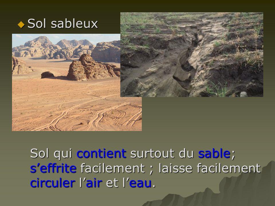 Sol sableux Sol qui contient surtout du sable; s'effrite facilement ; laisse facilement circuler l'air et l'eau.