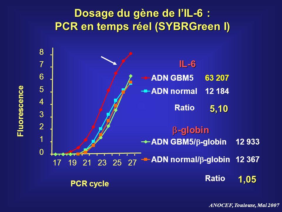 Dosage du gène de l'IL-6 : PCR en temps réel (SYBRGreen I)