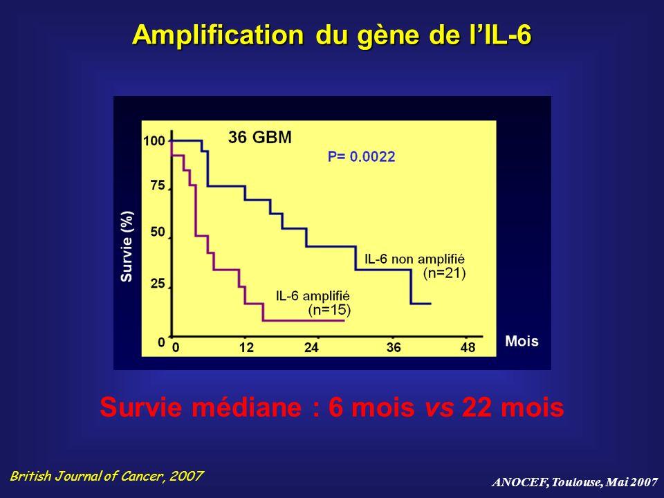 Amplification du gène de l'IL-6 Survie médiane : 6 mois vs 22 mois