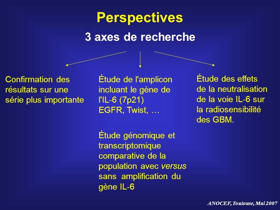 Perspectives 3 axes de recherche