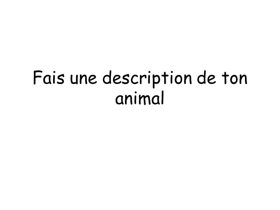 Fais une description de ton animal