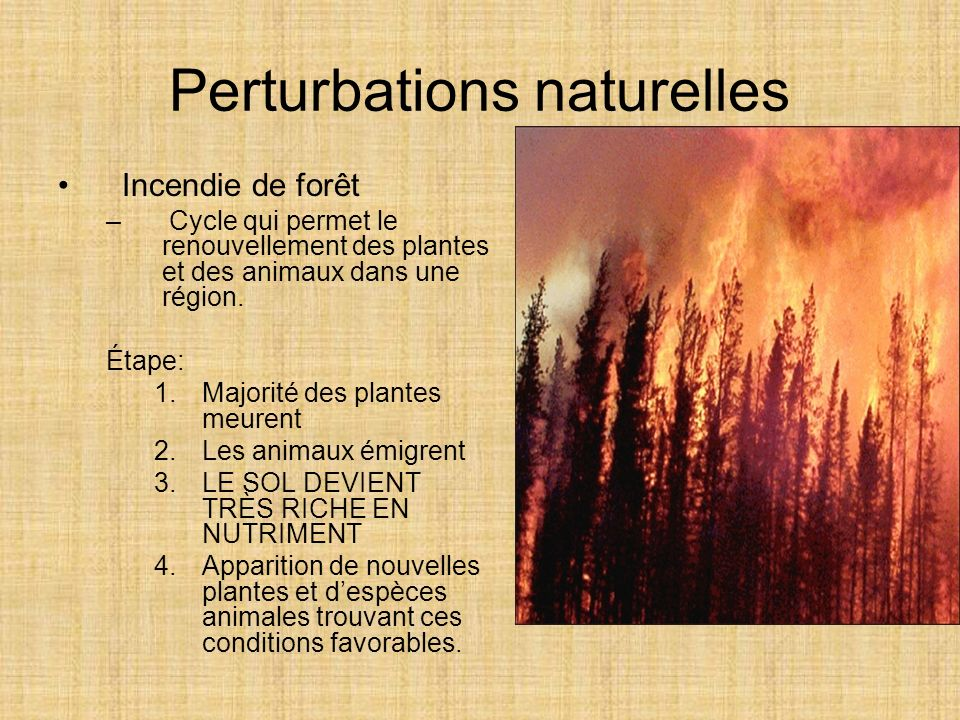 Perturbations naturelles