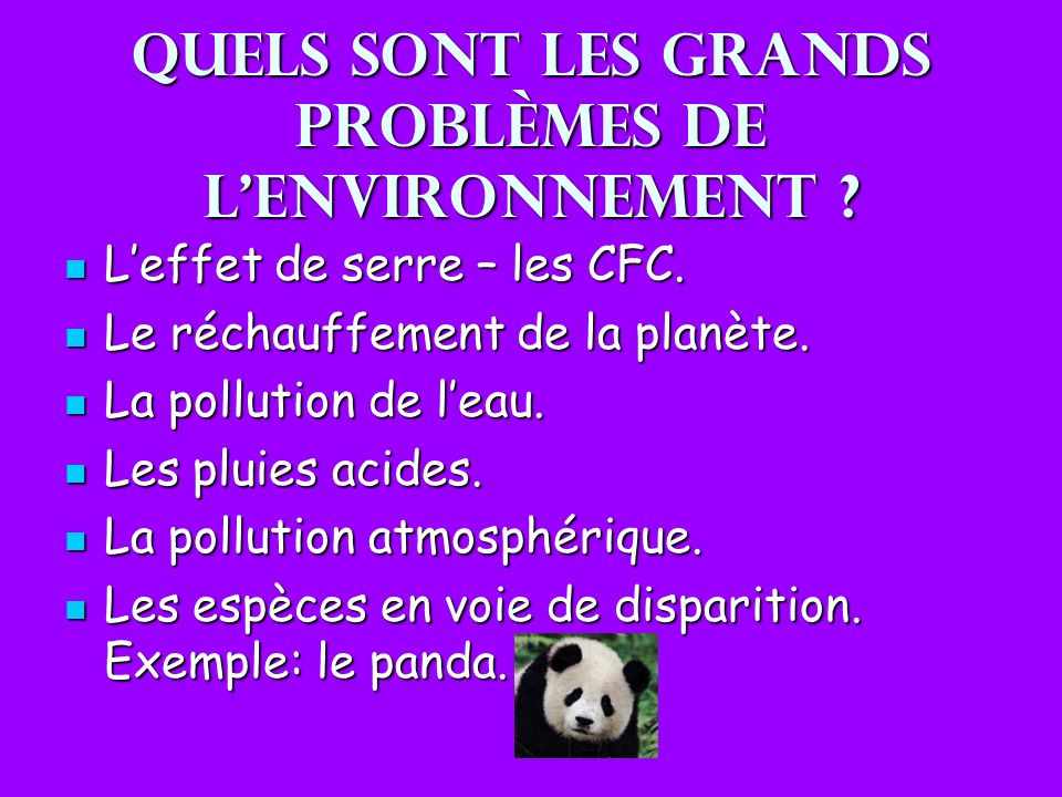 Quels sont les grands problèmes de l'environnement