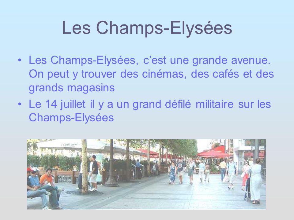 Les Champs-Elysées Les Champs-Elysées, c'est une grande avenue. On peut y trouver des cinémas, des cafés et des grands magasins.