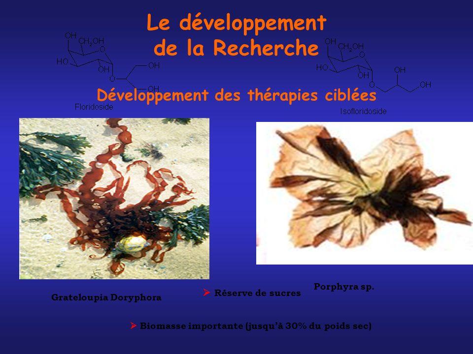 Le développement de la Recherche Développement des thérapies ciblées