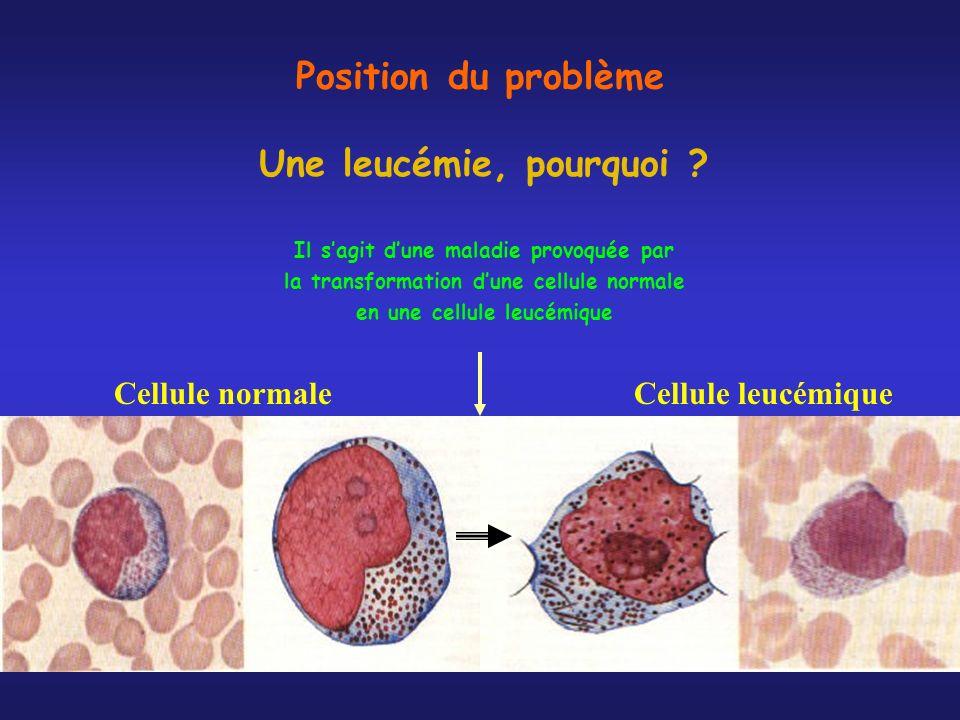 Position du problème Une leucémie, pourquoi