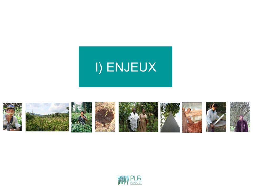 I) ENJEUX