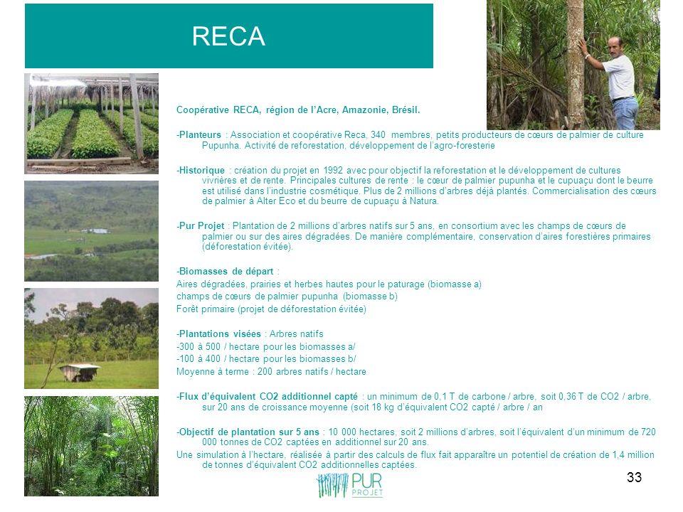 RECA Coopérative RECA, région de l'Acre, Amazonie, Brésil.