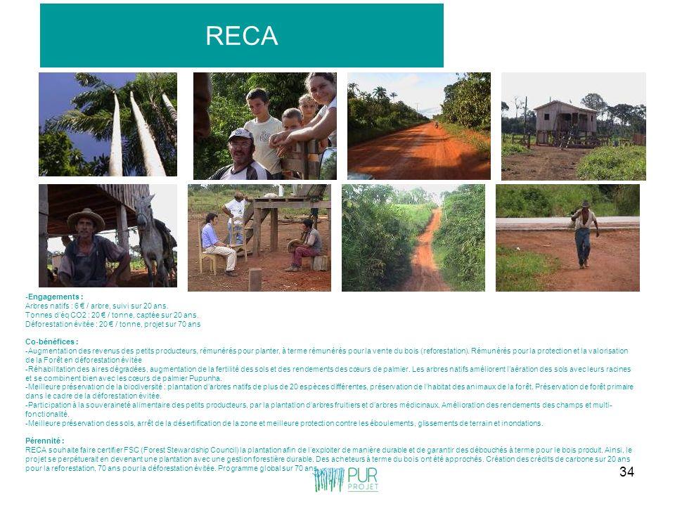 RECA -Engagements : Arbres natifs : 6 € / arbre, suivi sur 20 ans.