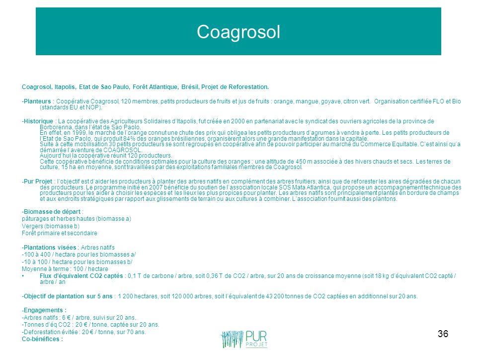Coagrosol Coagrosol, Itapolis, Etat de Sao Paulo, Forêt Atlantique, Brésil, Projet de Reforestation.