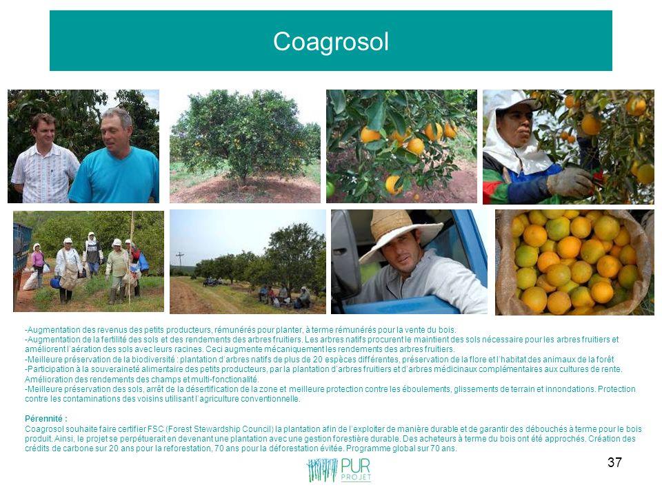 Coagrosol -Augmentation des revenus des petits producteurs, rémunérés pour planter, à terme rémunérés pour la vente du bois.