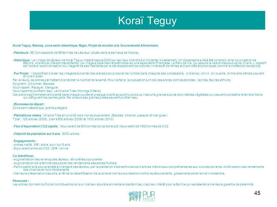 Koraï Teguy Koraï Teguy, Niamey, zone semi-désertique, Niger, Projet de soutien à la Souveraineté Alimentaire.