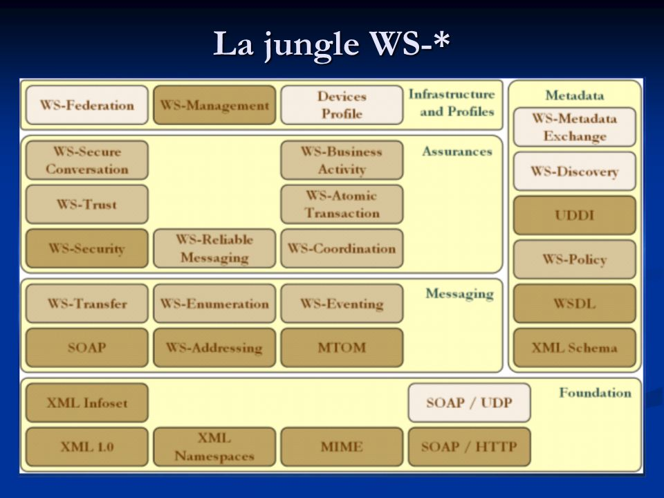 La jungle WS-*