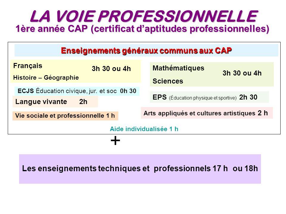 1ère année CAP (certificat d'aptitudes professionnelles)