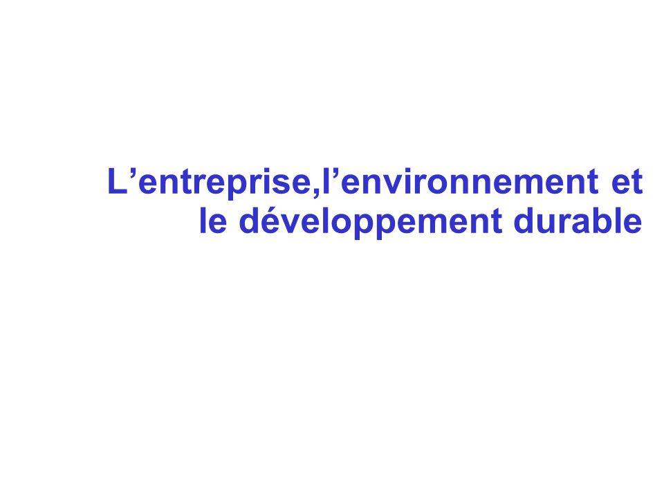 L'entreprise,l'environnement et