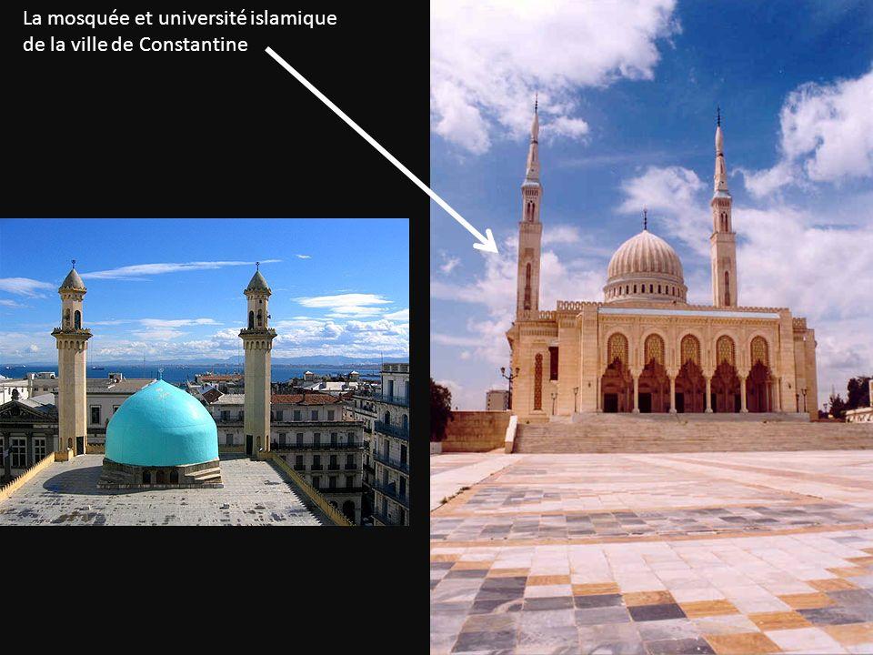 La mosquée et université islamique