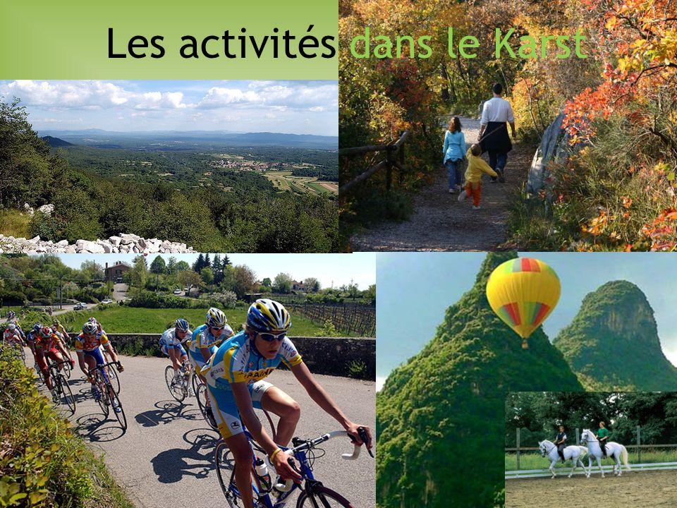 Les activités dans le Karst