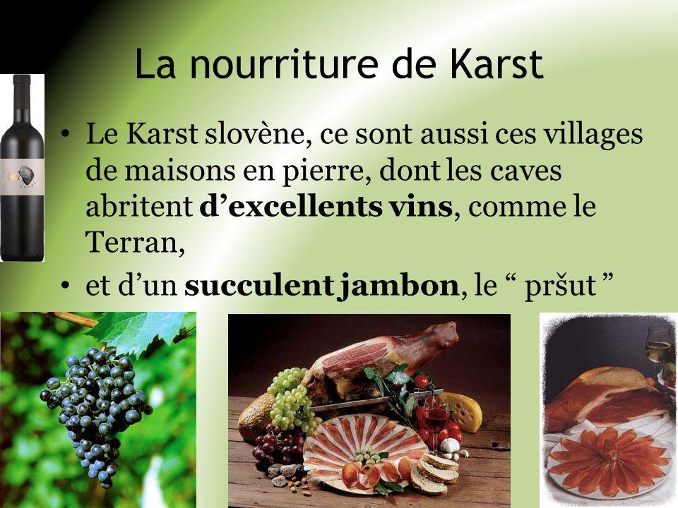 La nourriture de Karst Le Karst slovène, ce sont aussi ces villages de maisons en pierre, dont les caves abritent d'excellents vins, comme le Terran,