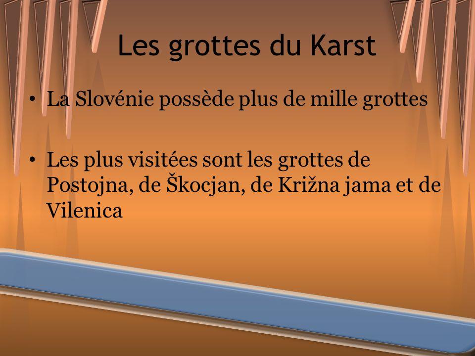 Les grottes du Karst La Slovénie possède plus de mille grottes