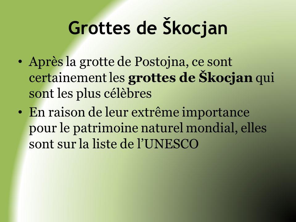 Grottes de Škocjan Après la grotte de Postojna, ce sont certainement les grottes de Škocjan qui sont les plus célèbres.