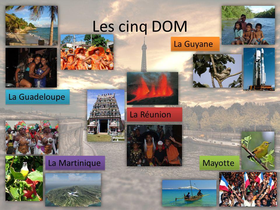 Les cinq DOM La Guyane La Guadeloupe La Réunion La Martinique Mayotte